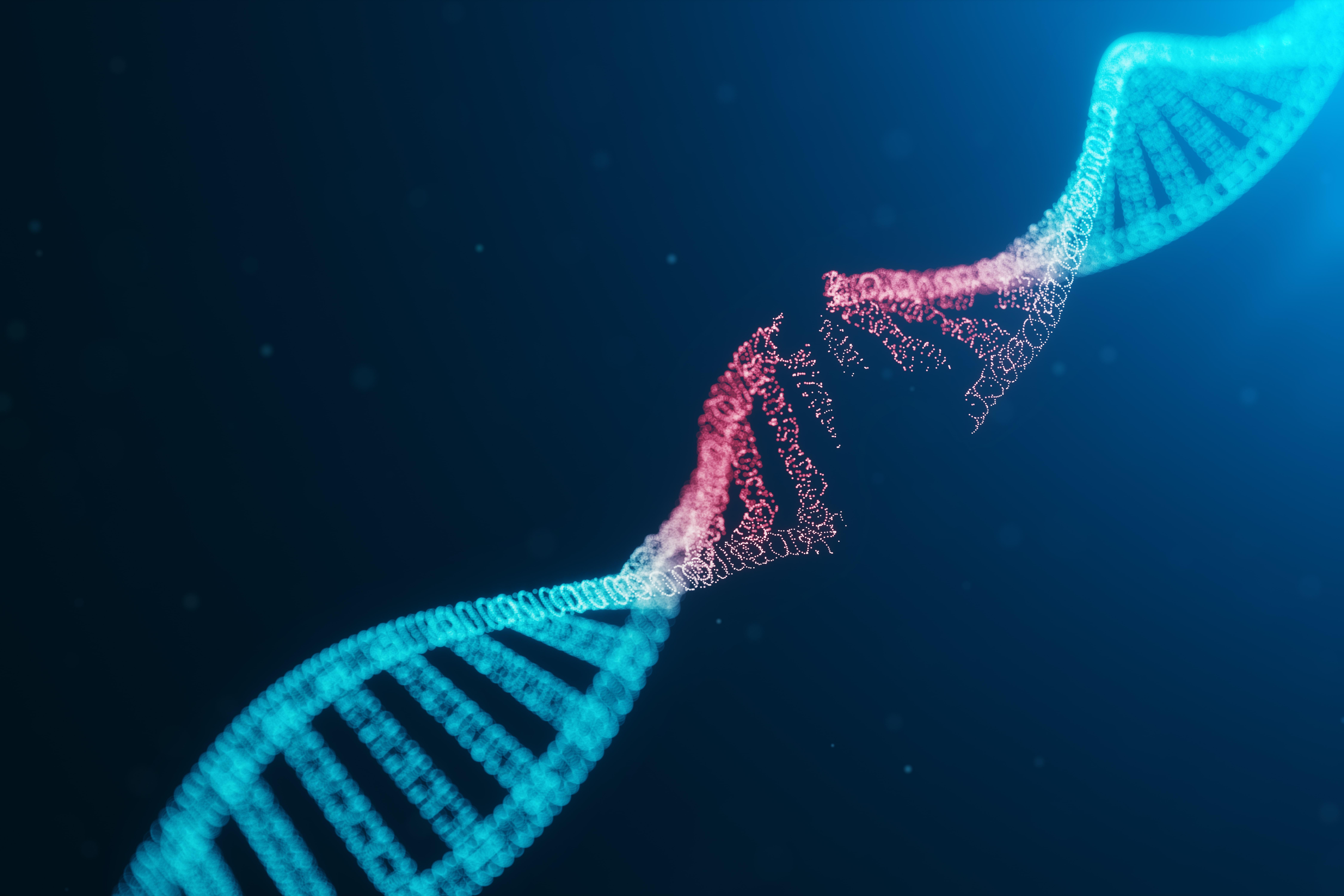 La influencia de los telómeros en la salud mental